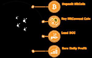 Bitcoin Profit Test