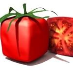 GMO Square Tomato